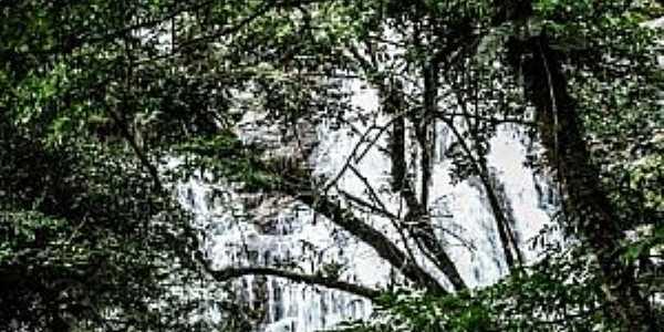 Parque Nacional Braço Esquerdo