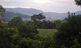 Dalbérgia - Vista da cidade-Foto:CaioCezar