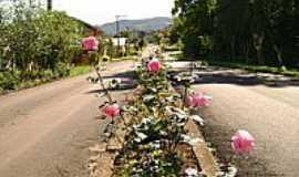 Engenho Velho - Avenida-Foto:Evandrinho_Falabrett…