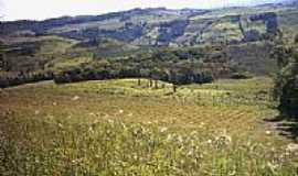Fraiburgo - Vista da região de Fraiburgo-Foto:Vanderlei Toffoli