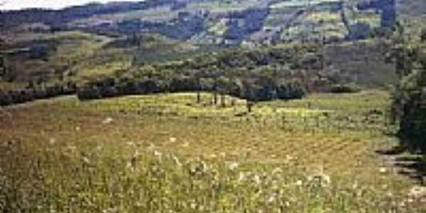 Vista da região de Fraiburgo-Foto:Vanderlei Toffoli