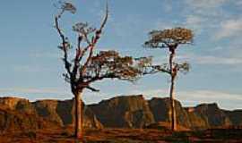 Grão Pará - Serra do Corvo Branco-Foto:ANTONELLO FOTOS