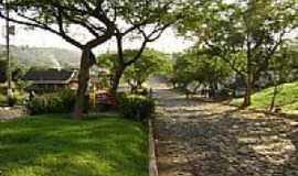 Guatambú - Avenida-Foto:Andreia Zezak