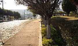Lebon R�gis - Avenida arborizada em Lebon R�gis-Foto:Eduardo Pierdon�