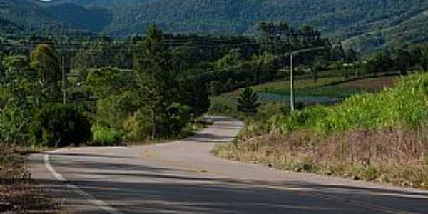 Estrada Lontras - Presidente Nereu  - por Leo Laps