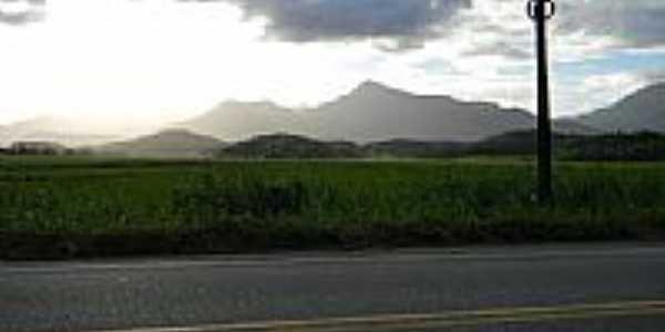 Estrada,arroz,montanhas e Sol em Massaranduba-SC-Foto:felpzs