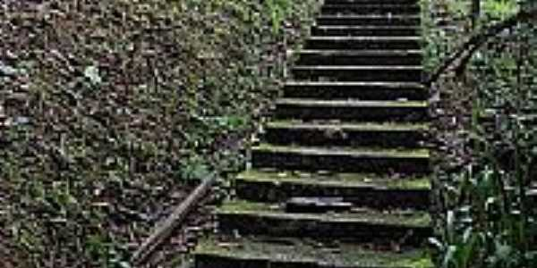 Escadaria para uma Capelinha em Nova Trento-SC-Foto:Sandro Salomon