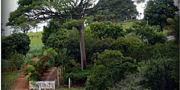 Água Verde-CE-Área rural na Rodovia BR-101-Foto:ARAGÃO