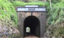 Pinheiro Preto - Túnel Histórico, Por Josane Tonello