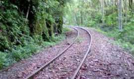 Poço Preto - Antiga estrada de ferro de Poço Preto - SC, Por Edson Thadeu