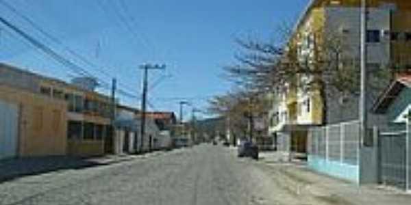 Avenida Senador Fontana em Porto Belo-Foto:Carlos C. Nasato