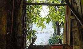 Ribeirão da Ilha - Beleza despedaçada