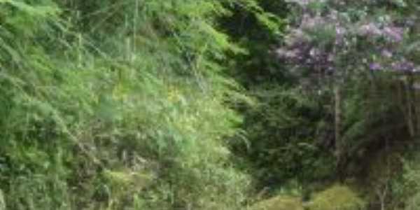 rio dos bugres, Por murilo antunes goedert