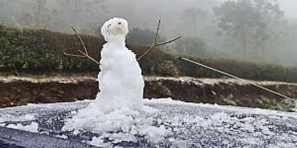 Imagens da cidade de São Joaquim/SC com queda de neve - Julho/2021-Foto:NSC Total