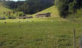 São Martinho - São Martinho-SC-Área rural-Foto:eliseo c. martínez