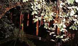 São Miguel do Oeste - Visão noturna da Gruta de N.Sra.de Lourdes em São Miguel do Oeste-SC-Foto:José Glanert