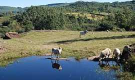 Sombrio - Sombrio-SC-�rea rural-Foto:Marlon Antonelli