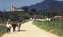 Tijucas - Timbé, localidade da zona rural de Tijucas.