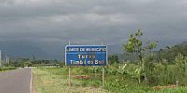 Timbé do Sul por Jucalodetti