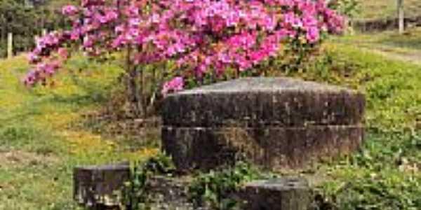 Monumento e flores em Treviso-SC-Foto:jair armando amoroso