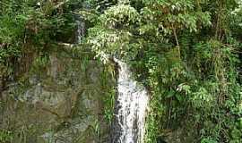 Urussanga - Urussanga-SC-Cachoeira Belvedere-Foto:José Carminatti