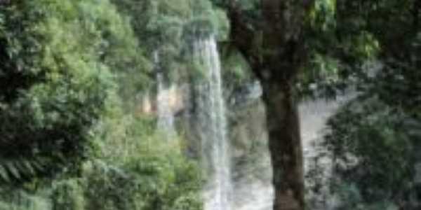 Cachoeira do Cambará - maravilhosa!, Por Tania Gollnick