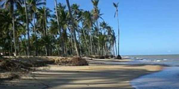 Praia de Barra Velha, Por Antonio Fernando de Vasconcelos Pereira