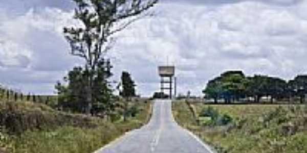 Rodovia próximo ao trevo de Cumbe-SE-Foto:Sergio Gomes de Mora…