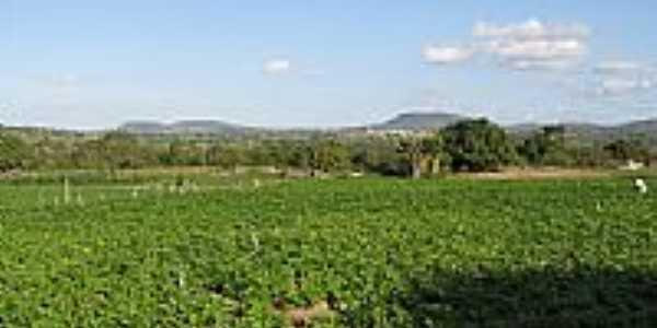 Vista da região de Moita Bonita-SE-Foto:Almeida Bispo