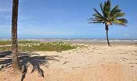 Mosqueiro - Mosqueiro-SE-Coqueiros na praia do Mosqueiro-Foto:www.praias-360.com.br