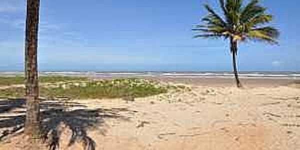 Mosqueiro-SE-Coqueiros na praia do Mosqueiro-Foto:www.praias-360.com.br