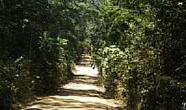 Santa Luzia do Itanhy - Estrada para o Povoado Crasto-Foto:Carllos.costa