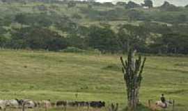 Tomar do Geru - Área rural em Tomar do Geru-Foto:clyt00