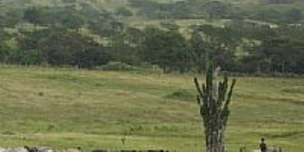 Área rural em Tomar do Geru-Foto:clyt00