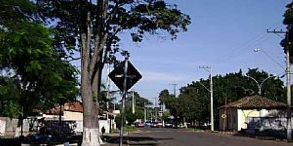 Águas Vermelhas-SP-Avenida Principal-Foto:Roselito Fávero da Silva
