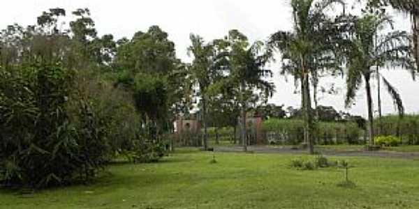 Ajapi-SP-Sítio próximo à cidade-Foto:www.pecini.com.br