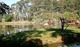Americana - Americana-SP-Parque Ecológico Zoo-Foto:Alexandre Chieus