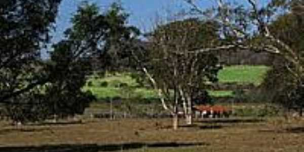 Zona rural de Américo Brasiliense-Foto:gustavo_asciutti