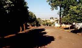Andradina - Rua Santa Catarina-Foto:nilson ferreira andr…