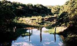 Aparecida de Monte Alto - Rio da Onça-Foto:Zekinha