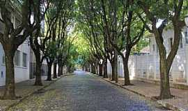 Araraquara - Bulevar dos Oitis - Rua Volunt�rios da P�tria - Rua 5 Foto de Cl�riston Martinelo