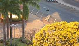 Araraquara - Vista parcial da Praça Pedro de Toledo - Ao fundo SESA Serviço Especial de Saúde Foto de bortoloti Márcio Bortoloti