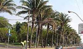Araraquara - Parque Infantil-Foto:Jos� Ricardo da Silv�