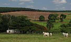 Arealva - Arealva-SP-Paisagem rural-Foto:gustavo_asciutti