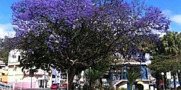 Aruj�-SP-Pra�a Benedito Ferreira Barbosa-Foto:Nelson Kimura
