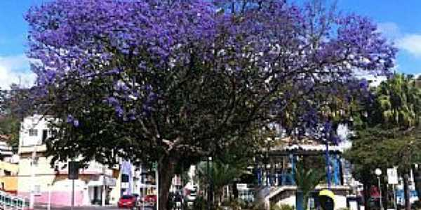 Arujá-SP-Praça Benedito Ferreira Barbosa-Foto:Nelson Kimura
