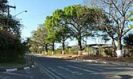 Atibaia - Avenida do Parque Residencial em Atibaia-Foto:Paulo Targino Moreir…