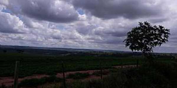 Imagens da localidade de Avencas Distrito de Marília - SP