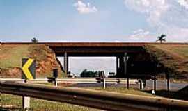 Barra Bonita - Barra Bonita-SP-Trevo de acesso-Foto:Zekinha