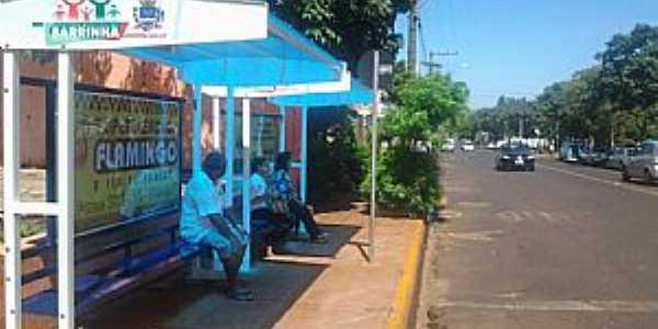 Avenida Costa e Silva